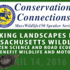"""Linking Landscapes"" Project Minimizes Impact of Roads on Wildlife"