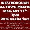 Town Meeting Tonight: Watch Live on WTV or Online