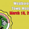 Westborough Town Meeting now on VOD