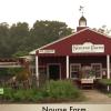 Nourse Farm – Heritage Day