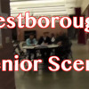 Westborough Senior Scene – October 2017