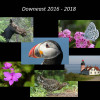 Atlantic Puffins & Other Birds of Downeast Maine with Garry Kessler 2-24-19