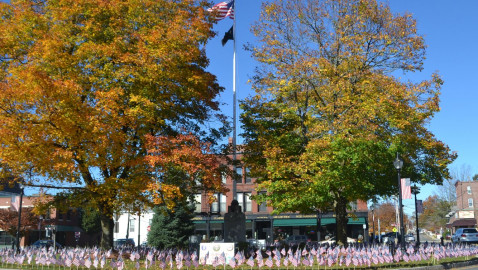 Field of Flags at Westborough Rotary Honors Veterans