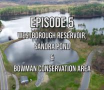 What's Up Westborough? Reservoir, Sandra Pond & Bowman Conservation