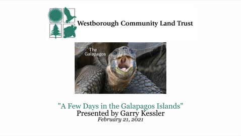 WCLT Presents – A Few Days in the Galapagos w/ Garry Kessler