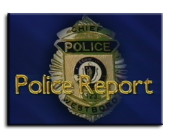 police_report02