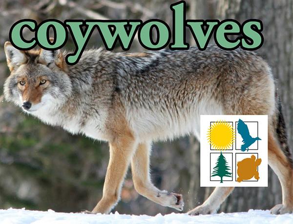 WCLT presents Coywolves with Jon Way