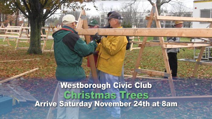 Westborough Civic Club Christmas Tree Lot