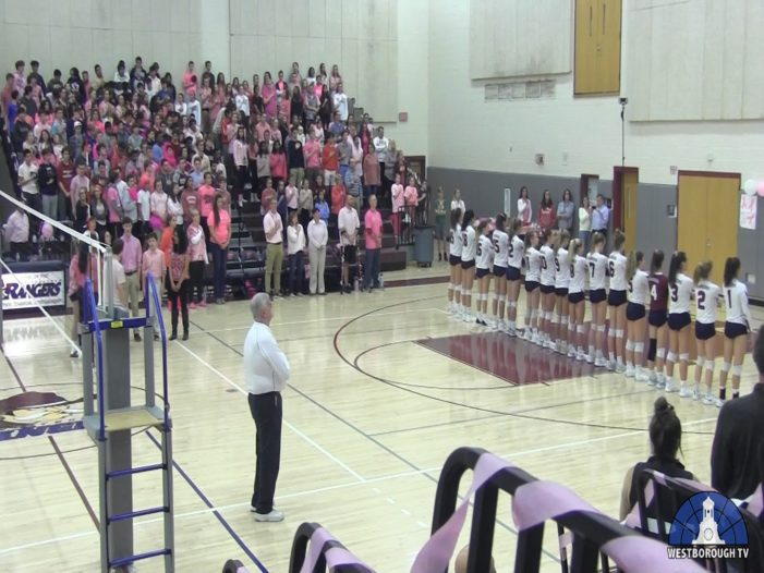 WHS DigPink Volleyball 2019