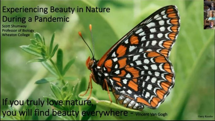 Experiencing Beauty in Nature During a Pandemic – WCLT Presentation