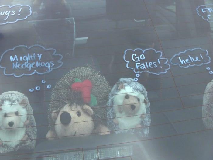 Fales Staff Car Parade – Hedgehogs say Hello!